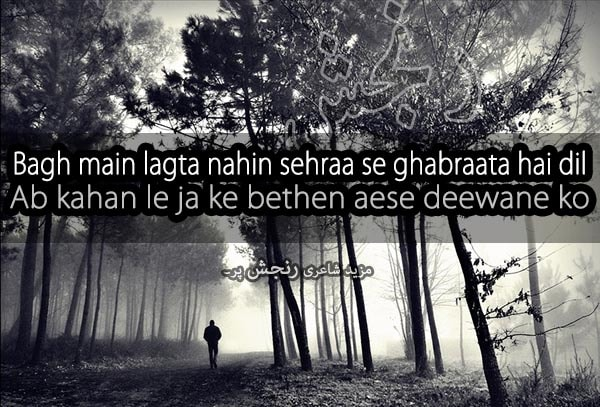 bagh main dil nahi lagta